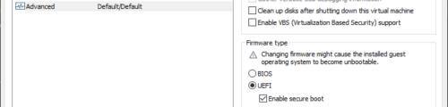 Advanced - Firmware type